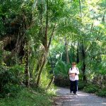 Catherine walking through the rainforest on the Zimbabwean side of the Victoria Falls